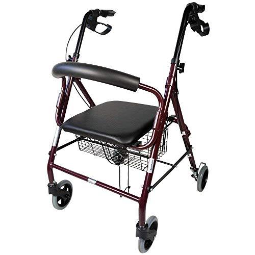 Mobiclinic, Andador para ancianos, Modelo Escorial, Marca española, Plegable, Frenos manuales y...