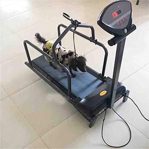 RGLZY Cinte De Correr Perro para Perros Pequeños, Máquina De Ejercicio para Mascotas para Mascotas...