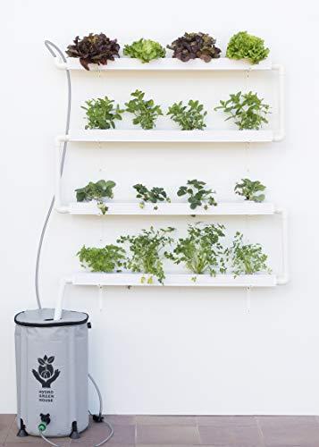 Hidroponía, Huerto Vertical para Cultivo de 16 Plantas, con depósito de 50 litros y riego...