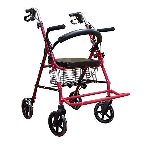 Mobiclinic, Modelo Colón, Andador y silla de ruedas para minusvalidos, ancianos, adultos o mayores,...