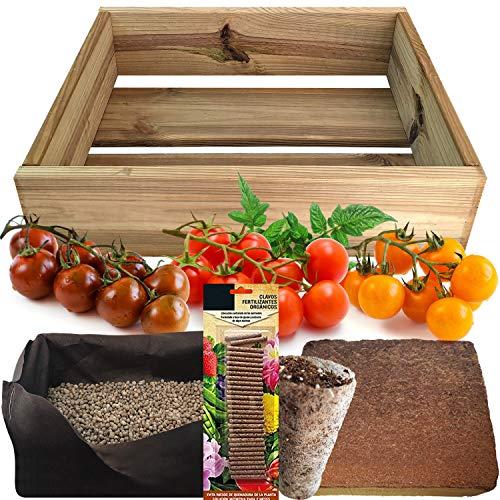 No Plan B for Earth Kit de Cultivo con Maceta de Pino Tratada. Semillas de Tomates Cherry, Red...