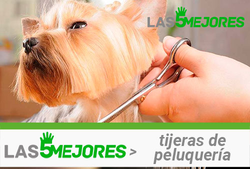 tijeras de peluquería canina
